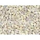 [Grains]  Barley, Pearled  100% Organic