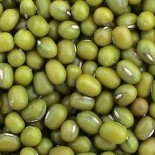 [Beans]  Mung  100% Organic