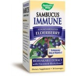 [Nature`S Way] Natural Remedies Sambucus Immune Lozenge