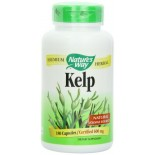 [Nature`S Way] Herbal Singles Kelp