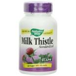 [Nature`S Way]  Milk Thistle