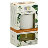 [Aura Cacia] Aromatherapy Accessories Uplift, Bergmt/Orng Elec Frshnr