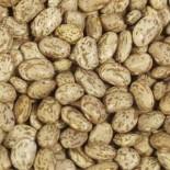 [Beans]  Pinto