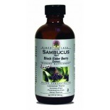 [Nature`S Answer] Alcohol Free Liquid Extracts, Super Concentrated Sambucus (Black Elder Berry)