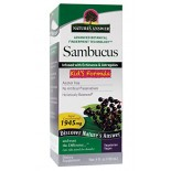 [Nature`S Answer] For Children Sambucus Kids Formula