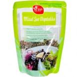[Sea Tangle Noodle Company] Pasta Mixed Sea Vegetables