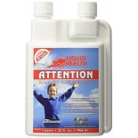 [Liquid Health]  Attention